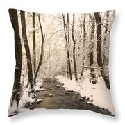 Limentra In Winter Throw Pillow