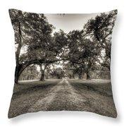Limerick Plantation Live Oaks Throw Pillow