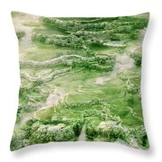 Limestone Detail Minerva Springs Yellowstone National Park Throw Pillow