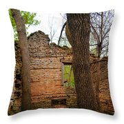 Limestone Relic Throw Pillow