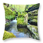 Limestone Waters Throw Pillow