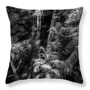 Limited And Restricted Throw Pillow