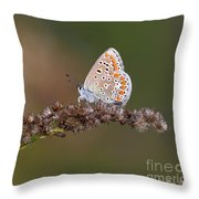 L'immigrant. Throw Pillow