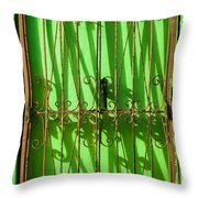 Limon Puerta Throw Pillow