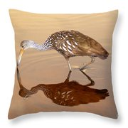 Limpkin In The Mirror Throw Pillow