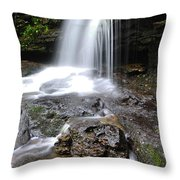 Lin Camp Branch Waterfall Monongahela National Forest Throw Pillow