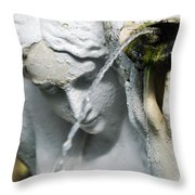 Lincoln Park Conservatory Fountain Throw Pillow