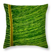 Lincoln Park Conservatory Palm Throw Pillow