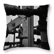 Lincoln Park Conservatory Water Works Throw Pillow
