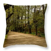 Linden Tree Alley Throw Pillow