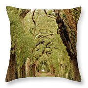 Line Of Oak Trees To Distance Throw Pillow