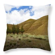 Line Of Trees At Painted Hills Throw Pillow
