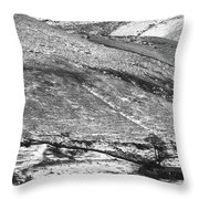 Lines And Landmarks Throw Pillow