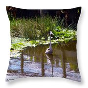 Lines And Reflection Throw Pillow