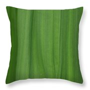 Lines Of A Leaf Throw Pillow