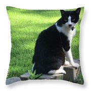 Lingering Lucy Throw Pillow