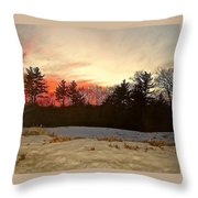 Lingering Winter Throw Pillow
