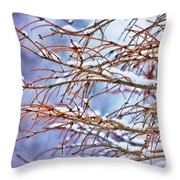 Lingering Winter Snow Throw Pillow