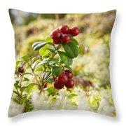 Lingonberries 1 Throw Pillow