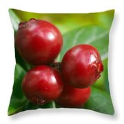 Lingonberries 2 Throw Pillow