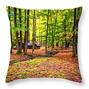 Linn Run Pennsylvania 2 - Paint Throw Pillow