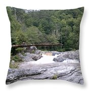 Linville Trail...dare To Walk A Limb Throw Pillow