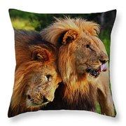 Lion 22 Throw Pillow