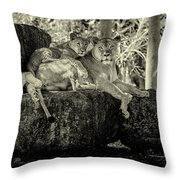 Lion And Her Cubs Throw Pillow