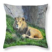 Lion At Leisure Throw Pillow