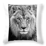 Lion Bw Throw Pillow