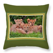 Lion Cubs. L A With Decorative Ornate Printed Frame. Throw Pillow