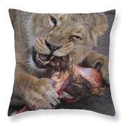 Lion Eating Throw Pillow