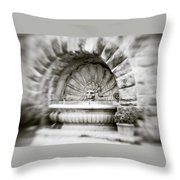 Lion Head Fountain Throw Pillow