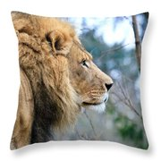 Lion In Thought Throw Pillow