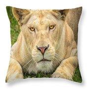 Lion Nature Wear Throw Pillow