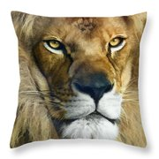 Lion Of Judah II Throw Pillow
