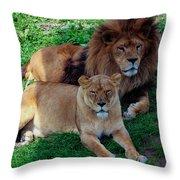 Lion Pair Throw Pillow