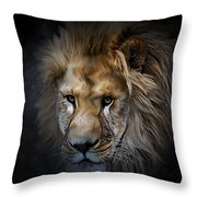 Lion Portraits 0055 Throw Pillow