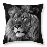 The Lion Pose Throw Pillow by Ken Barrett