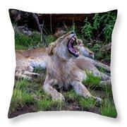 Lion Roar/2 Throw Pillow