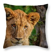 Lioness Cub Throw Pillow