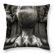 Lions Claw Throw Pillow