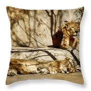 Lions Den Throw Pillow