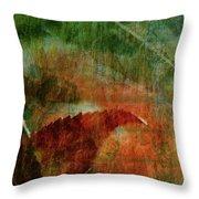 Liquid Amber Throw Pillow
