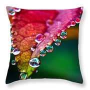 Liquid Beads Throw Pillow