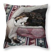 Liquid Cat Throw Pillow