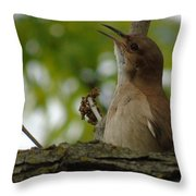 Listen To My Song Throw Pillow