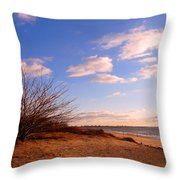 Listen To The Quiet Throw Pillow