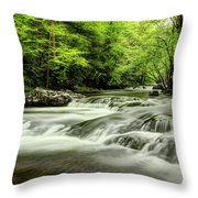 Listening To The Song Of The Stream Throw Pillow