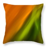 Lite Abstract 7 Throw Pillow